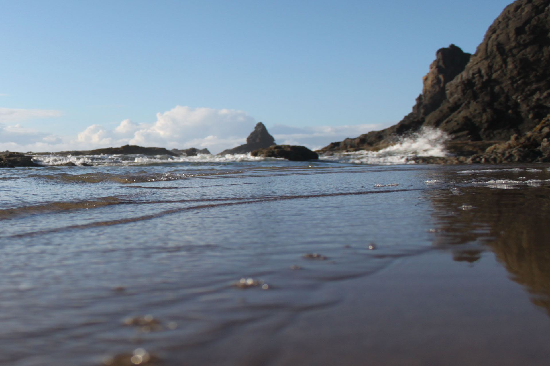 oregon coast website design